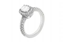 Tristan-Jades Engagement (1)